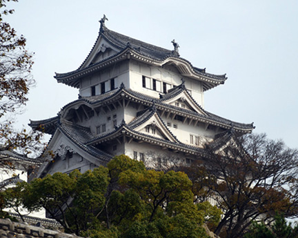Japan-to-home-dec-2008-(552