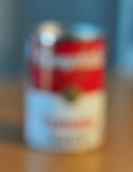 _DSC0596-campbell's-soup-can-8511360