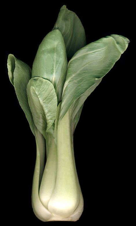 bok-choy-adjusted-with-layers